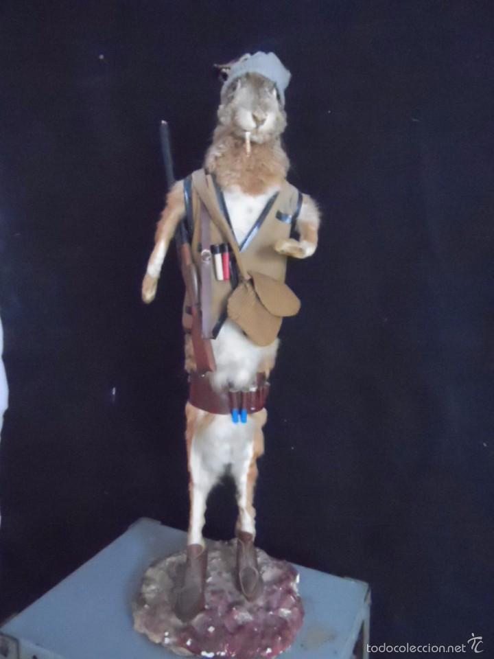 Vintage: increible TAXIDERMIA cazadores - OJO a MISTER RABBIT- DECO VINTAGE trofeo de caza - Foto 3 - 58923220