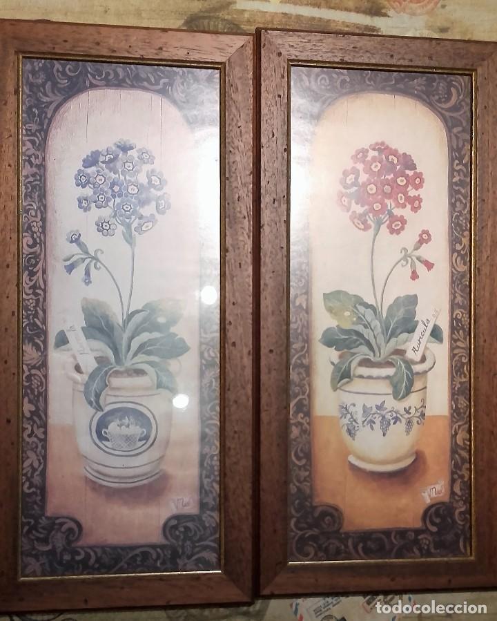 lote de 2 láminas con motivos de botánica - flo - Comprar en ...