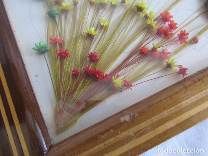 Vintage: Bandeja de madera y vidrio con mariposas. Brasil - Foto 9 - 113357163
