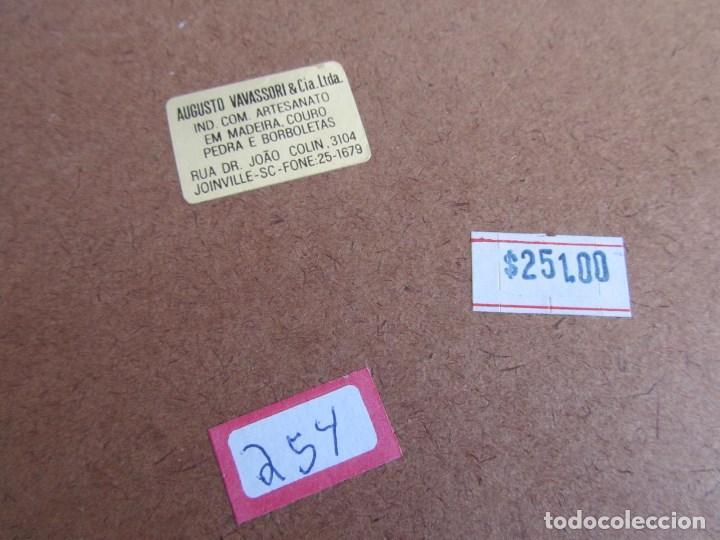 Vintage: Bandeja de madera y vidrio con mariposas. Brasil - Foto 11 - 113357163