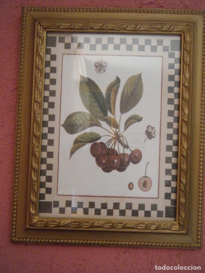 Vintage: 2 ANTIGUOS MARCOS DE MADERA CON LAMINAS DE FRUTAS. AÑOS 60 - Foto 2 - 211916613