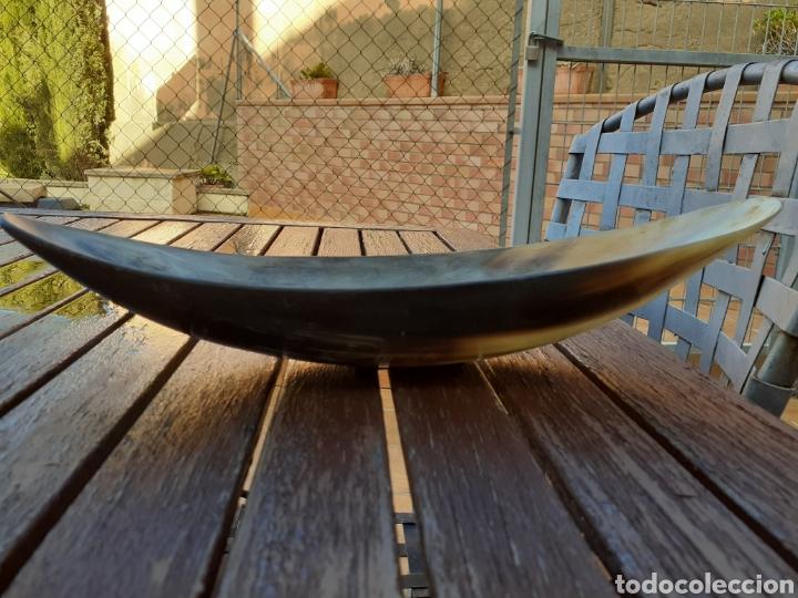 Vintage: Centro de mesa en cuerno hasta de toro - Foto 3 - 232128740