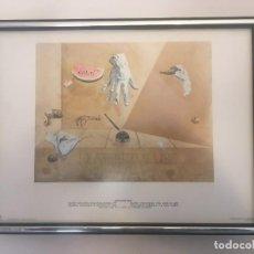 Vintage: CUADRO LAMINA DE SALVADOR DALI, DASA EDICIONS DE 1980 EQUILIBRIO INTRA-ATOMICO DE UNA PLUMA DE CISNE. Lote 236741935