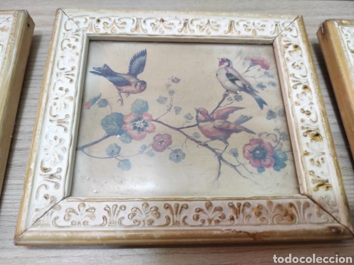 Vintage: 6 cuadros pequeños pájaros y mariposas - Foto 2 - 261926570