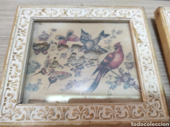 Vintage: 6 cuadros pequeños pájaros y mariposas - Foto 3 - 261926570