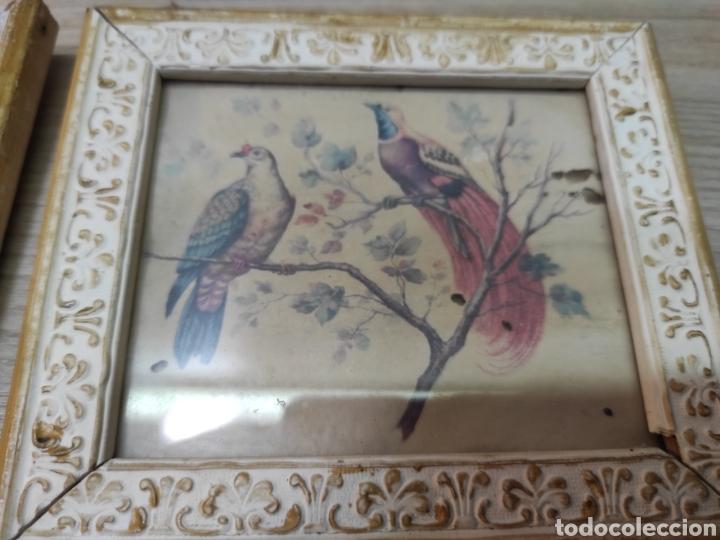 Vintage: 6 cuadros pequeños pájaros y mariposas - Foto 4 - 261926570