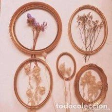 Vintage: LOTE DE MARCOS CLÁSICOS ANTIQUE UNIQUE. Lote 289204638