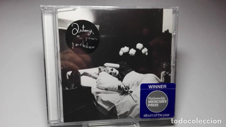 CD - MUSICA - ANTONY AND THE JOHNSONS ?– I AM A BIRD NOW - PRECINTADO! (Juguetes - Videojuegos y Consolas - Xbox One)